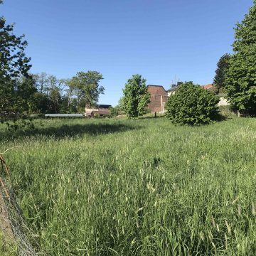 terrain à vendre - Herve Xhendelesse - Neufcour